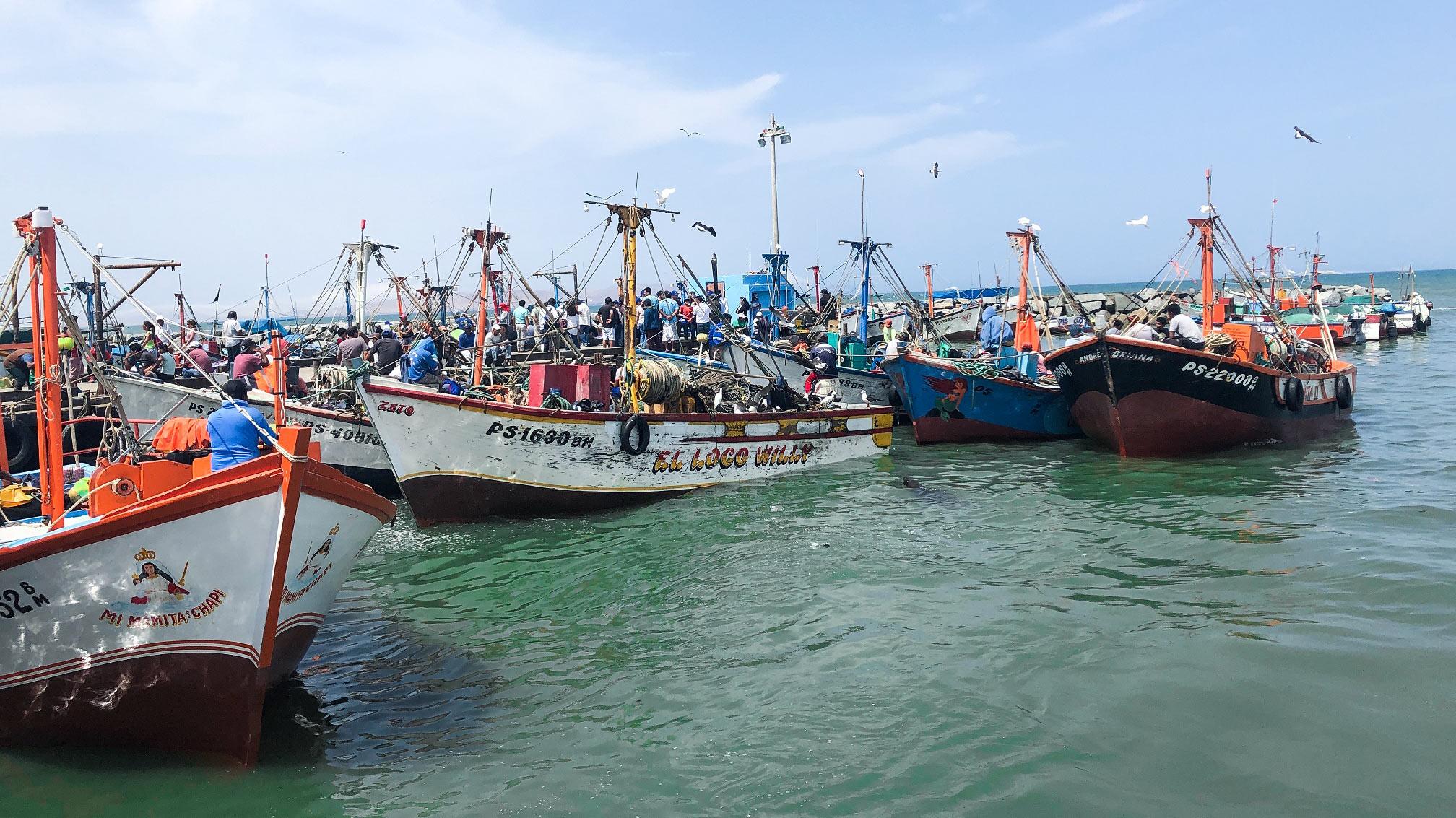 2021, el año del retorno de las inversiones pesqueras