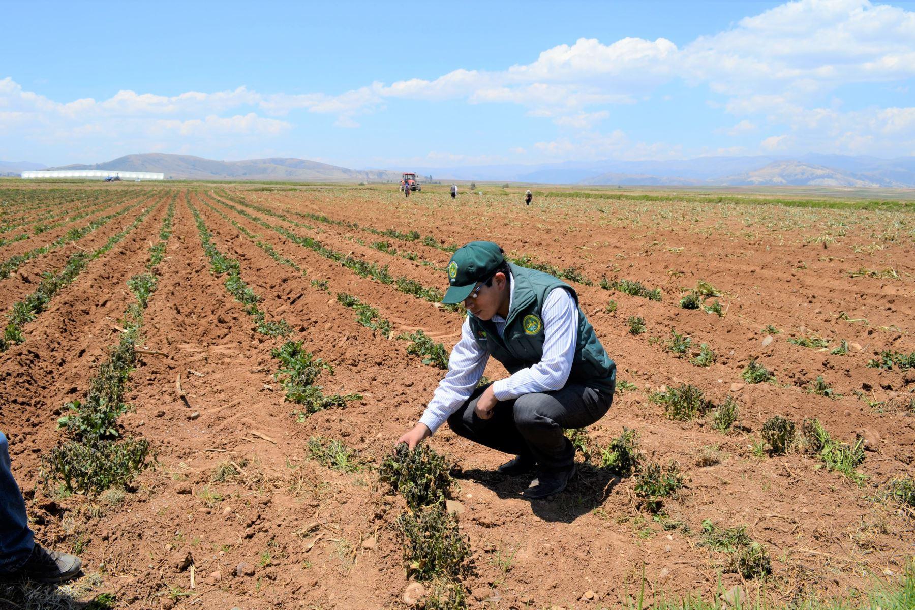 comision-de-economia-aprobo-dictamen-sobre-nueva-ley-agraria