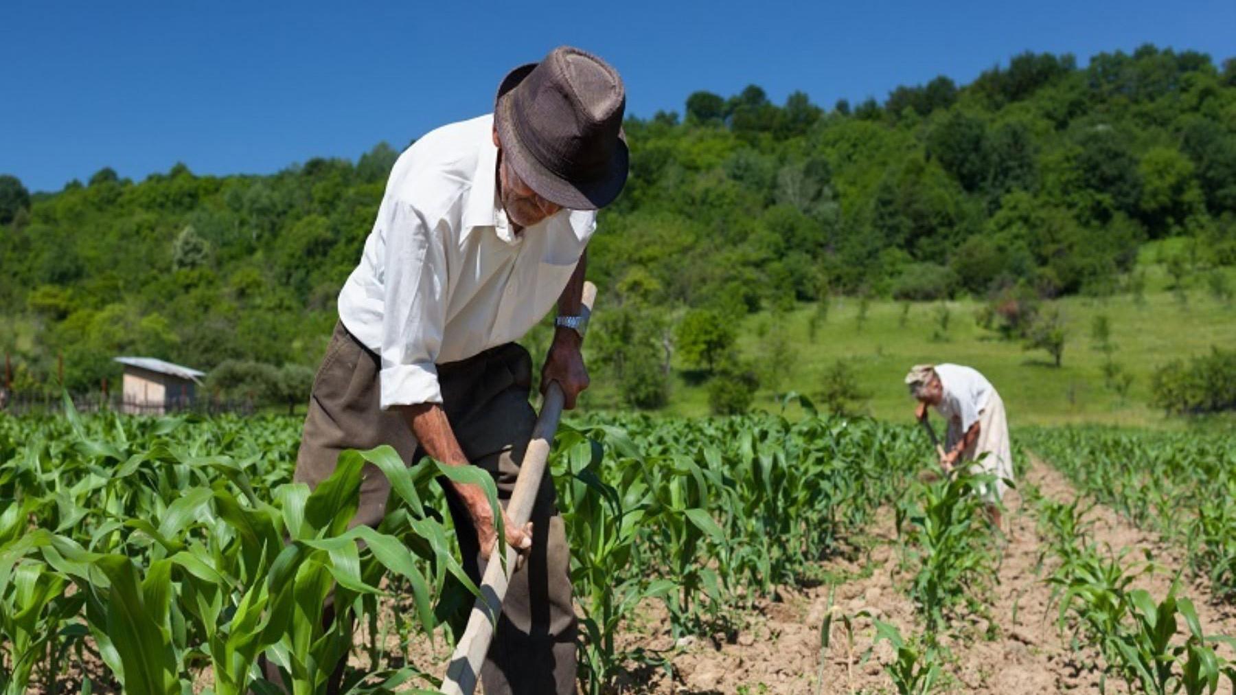 """Agroinvesting: """"Logramos eliminar los costos operativos de la valuación en cualquier zona rural"""""""