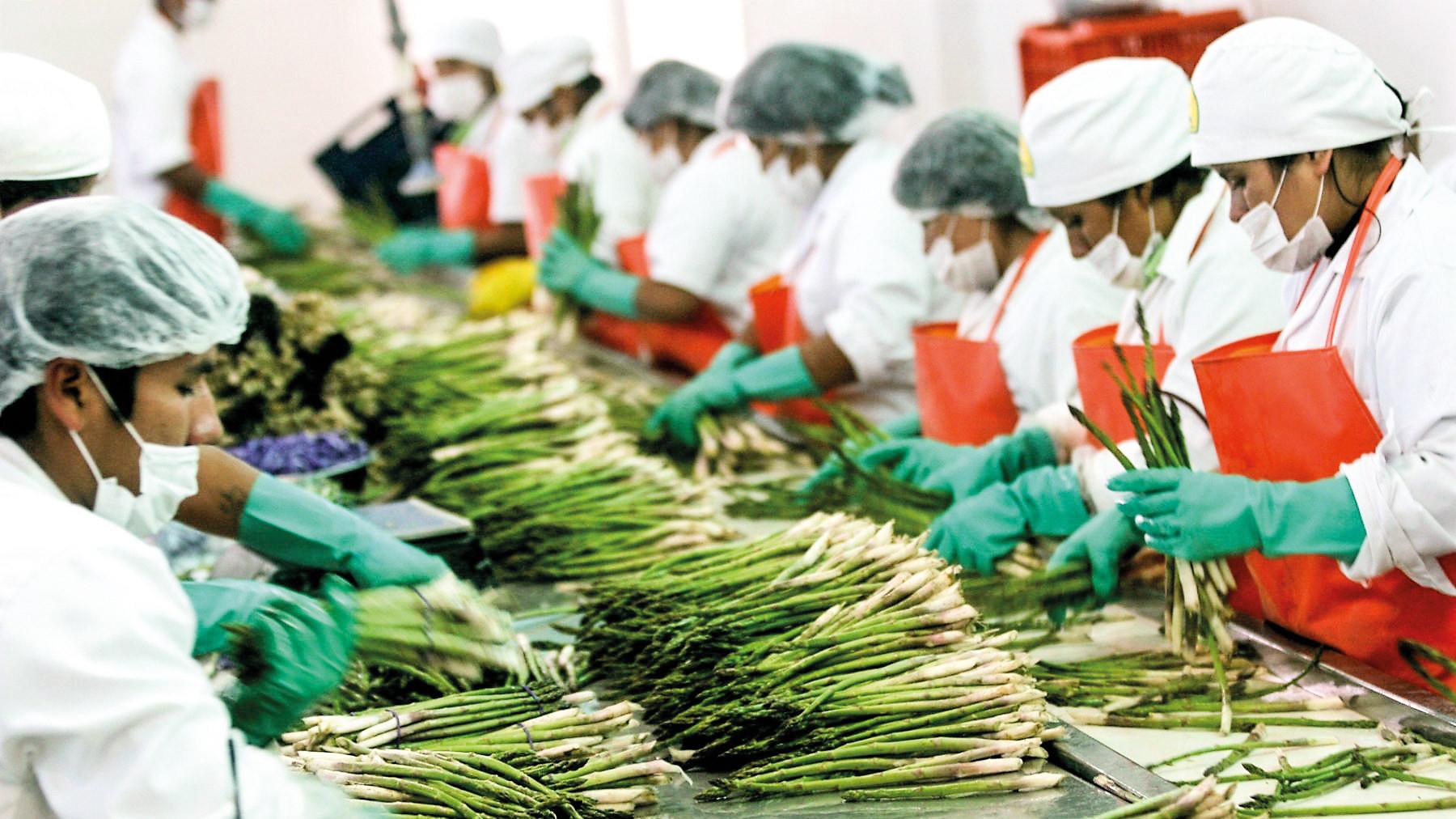 Nueva ley de promoción agraria: mayores costos forzarán la suspensión de inversiones