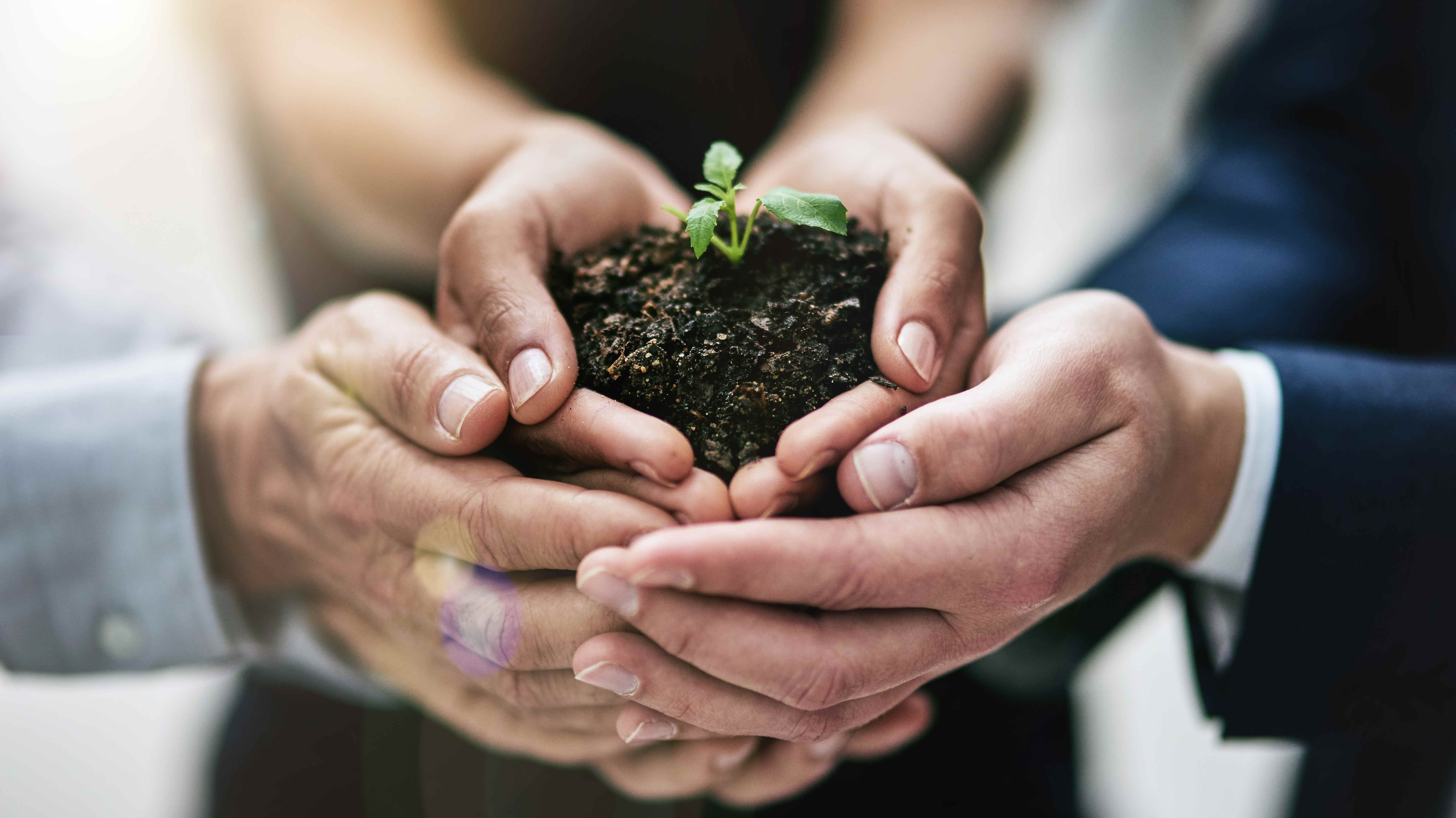 la-sostenibilidad-si-paga