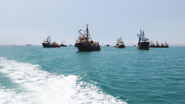 Algunas pesqueras aprovecharán el éxito de la segunda temporada para retomar inversiones en flota