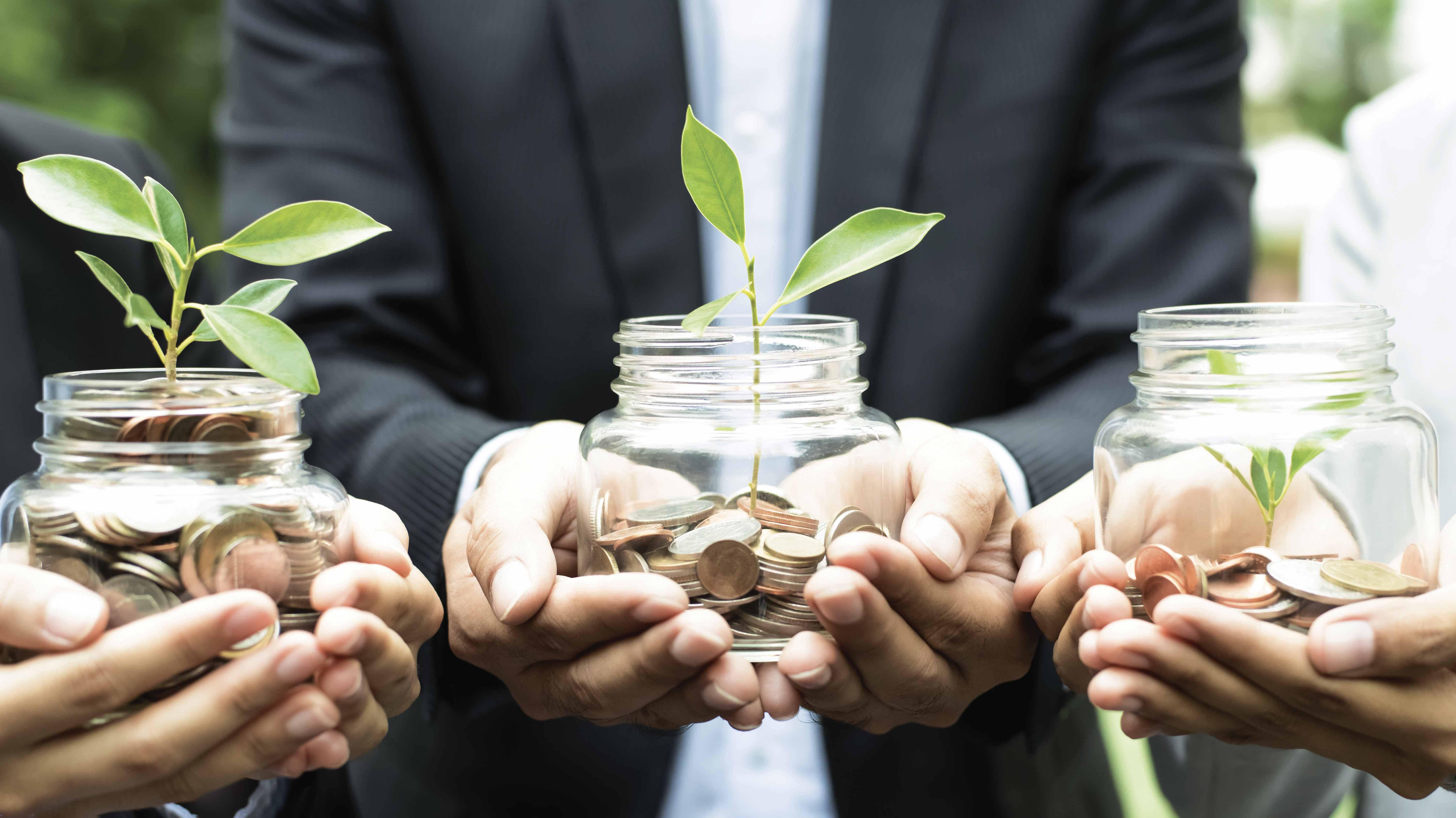 Inversiones sostenibles: aumenta el interés en el mercado local