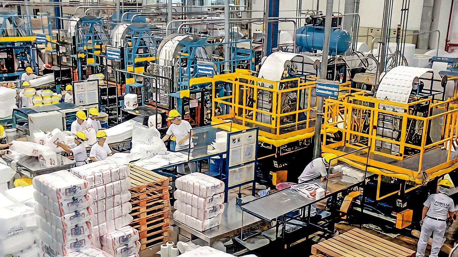 <p>Foco en Pamolsa, proveedor de empaques y envases para empresas como KFC, Norky's y Camposol</p>