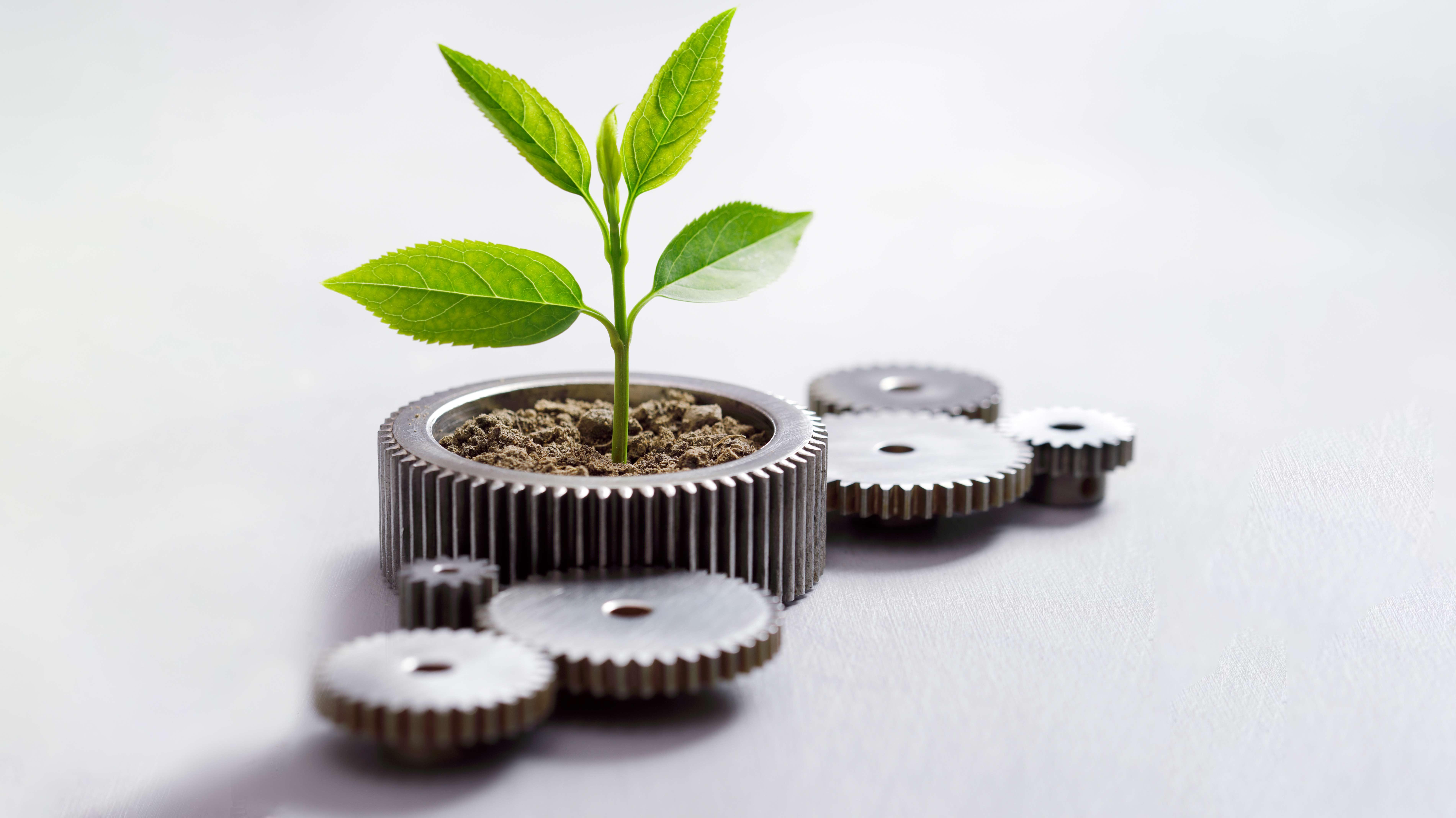 Agenda ESG: Directorios priorizan criterios sociales sobre ambientales y de gobernanza