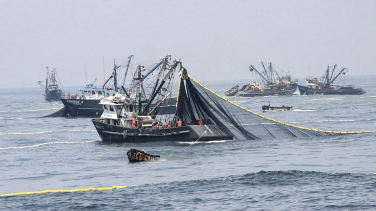 La apertura de la primera temporada de pesca está a punto de definirse