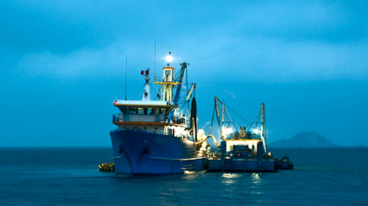 China Fishery y Copeinca tuvieron pérdidas conjuntas por US$19 millones en el primer semestre