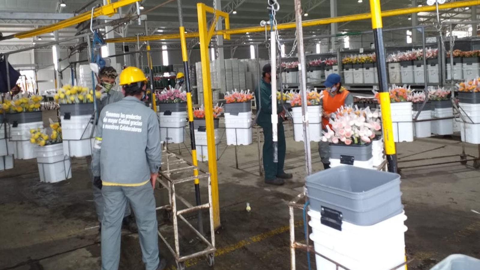 Cinco ventajas de contratar a un migrante en Colombia