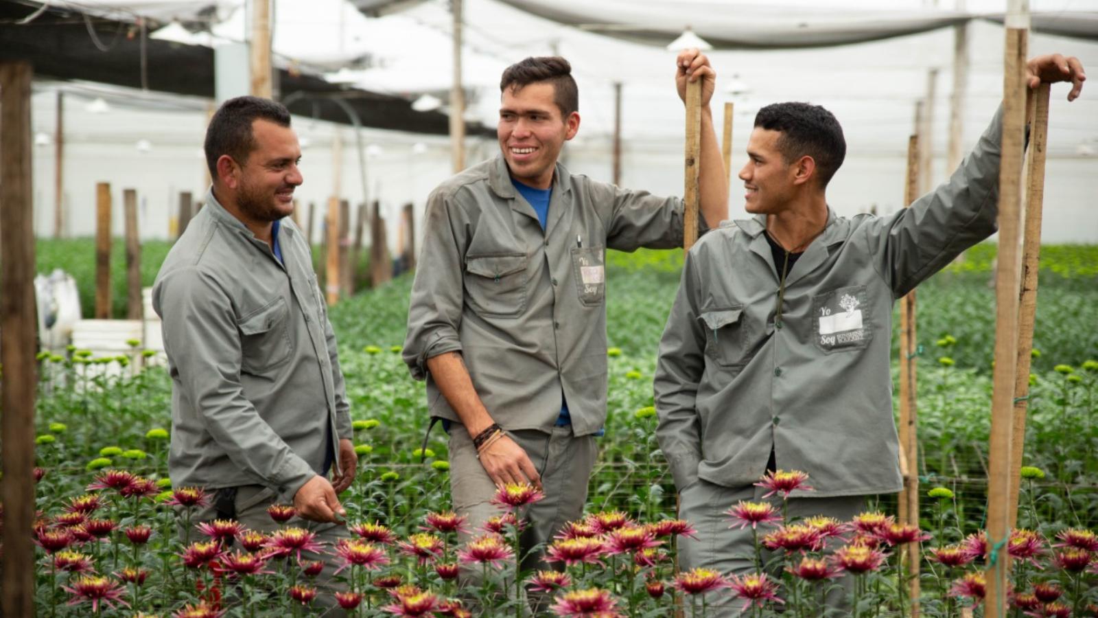 Regularizar a los migrantes: la economía lo agradece