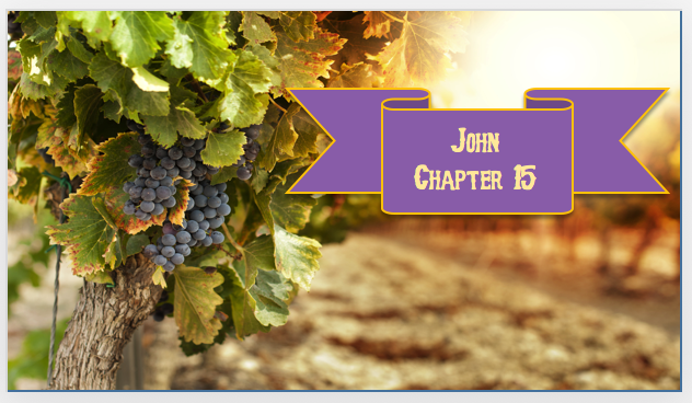 John Chapter 15 PowerPoint