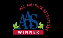 AAS Winner