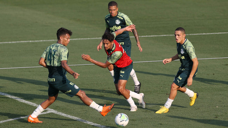Lucas Esteves Palmeiras