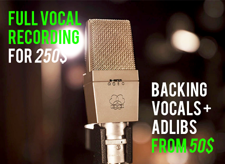 MALE VOCALS RECORDING - LEAD VOCAL, LEAD DOUBLE, HARMONIES, ADLIBS, BACKING VOCALS,  INDUSTRY STANDARD, CLEANED, COMPED AND TUNED