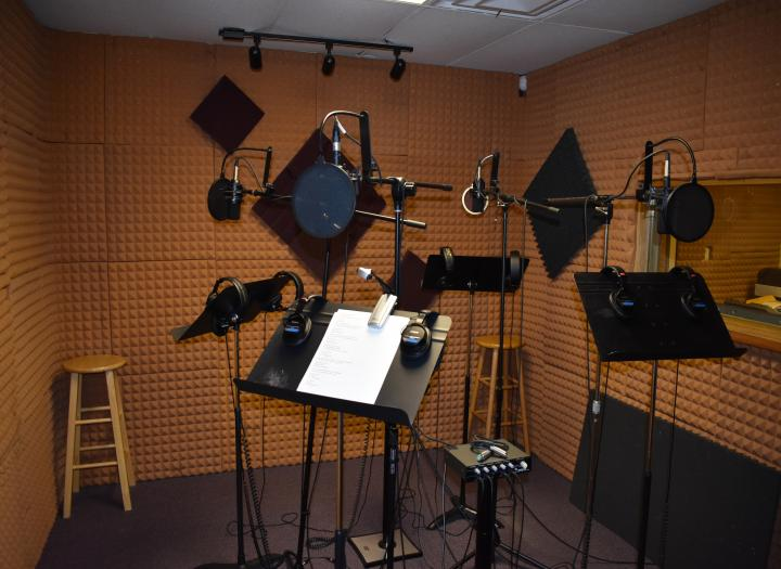 Professional Vocalist For Your Next Project. Just $75!