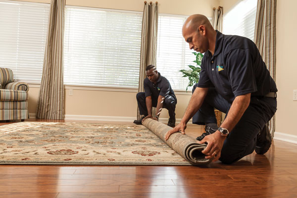Need a Carpet Cleaner – Hire a Carpet Cleaning Service for Fort Myers, Cape Coral, Naples, and Surrounding Cities