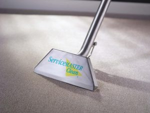 Steam Cleaning Carpets