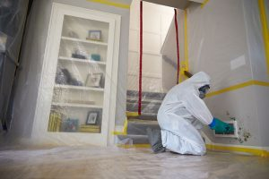 mold damage removal servicemaster by wright