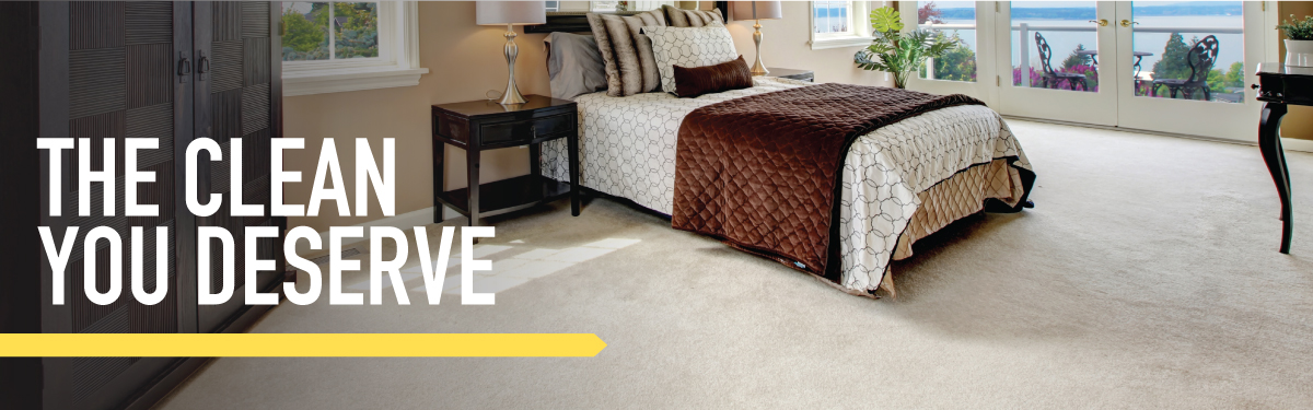 Carpet Cleaning in Southwest Florida