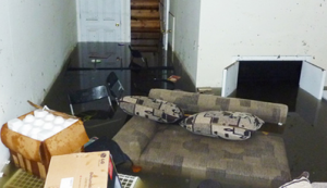 Water Damage Restoration - ServiceMaster by Wright