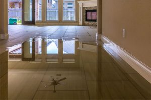 Water Damage Restorations and Repair Services