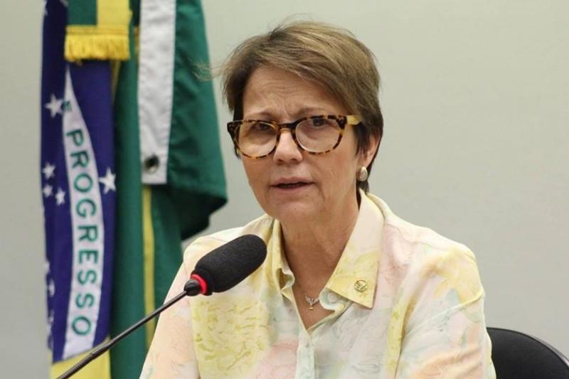 Ministra da Agricultura defende fim da tabela do frete rodoviário