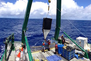 sediment net trap being brought onboard