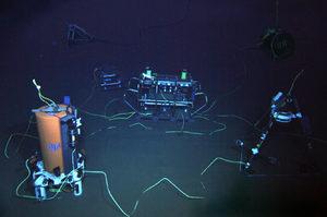 ALOHA Cable Observatory