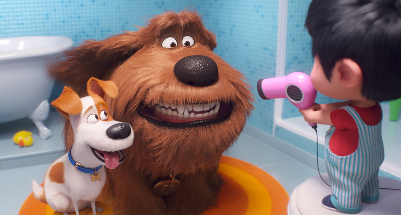 Review Secret Life Of Pets 2 Like Watching An Enhanced Home Pet Cam Datebook