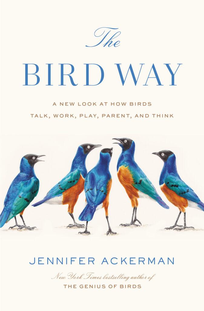 MER1a882ac2146b797c9a869289fe20c books0510 birds
