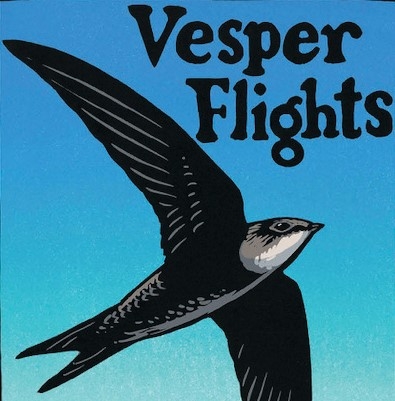 Review: Essay collection 'Vesper Flights' reveres beauty, birds and spirituality