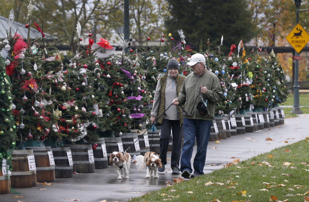 Free Christmas Meal Sonoma County 2020 Holidays 2020: Bay Area Christmas performances, light displays and