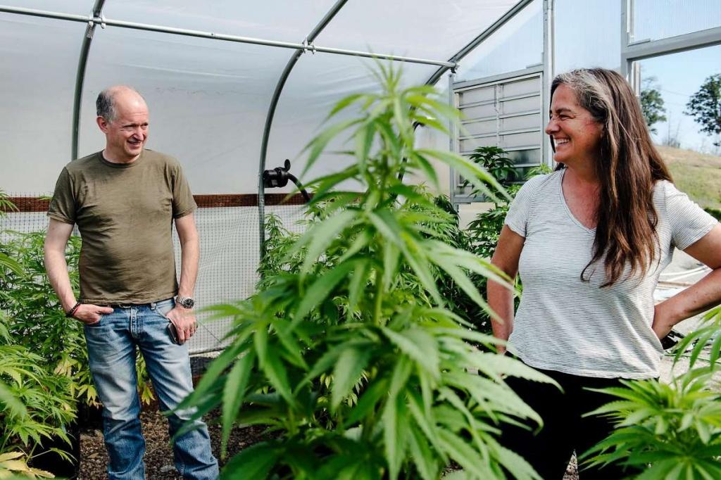 Merlot versus marijuana: Wine Country feuds over measure to grow pot