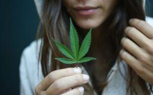 marketing a dispensary | GreenState