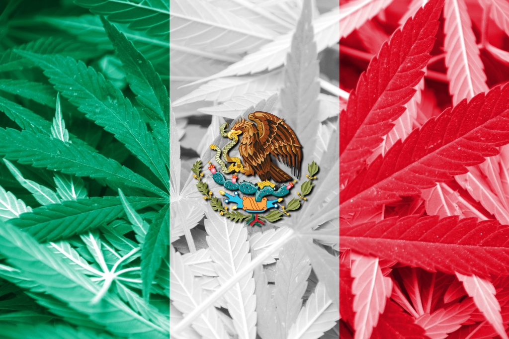 Mexico May Legalize Cannabis in 2021: Here's What It Means for You | GreenState
