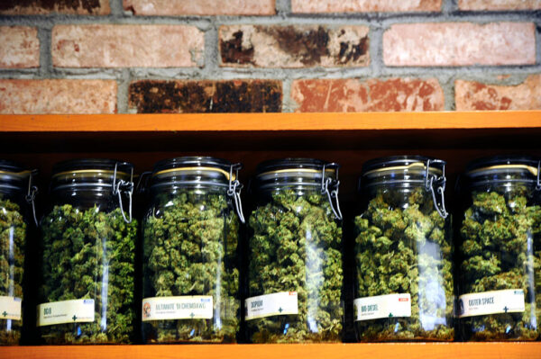 Detroit marijuana law is suspended over license fairness   GreenState
