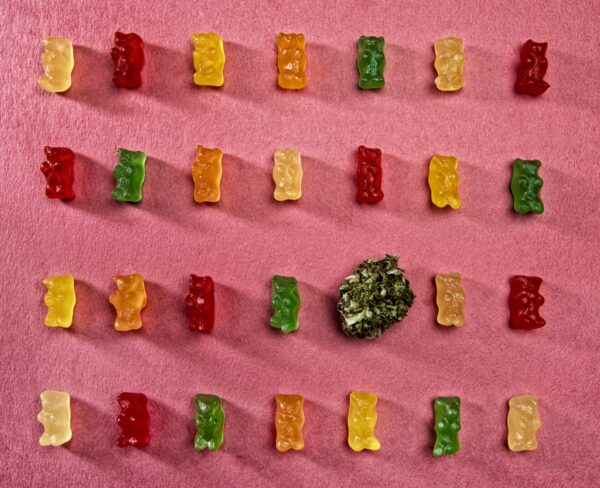 Ask Dr. Leigh: How dangerous are cannabis edibles for children?   GreenState