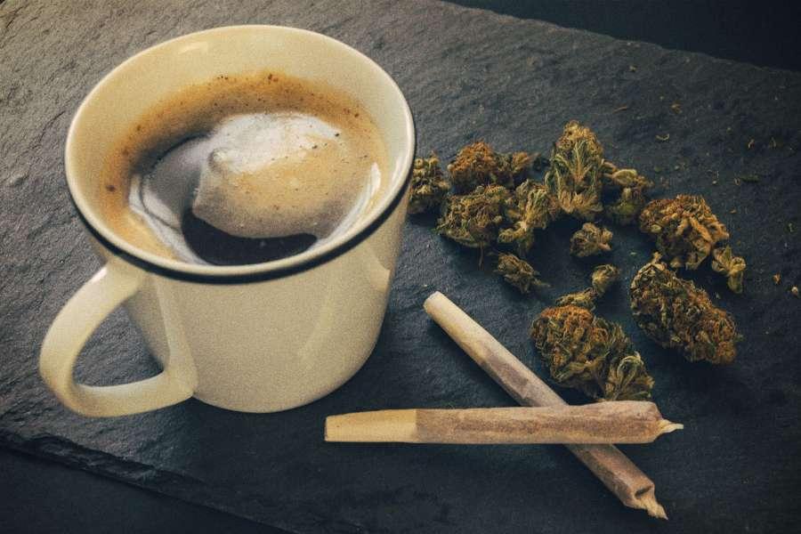The Beautiful Molecular Relationship Between Cannabis and Caffeine | GreenState