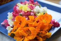 Fresh Organic Edible Flowers