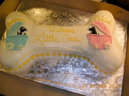 Sammy and Di-Baby Shower Cake
