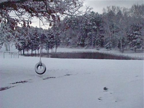 The snowy pond