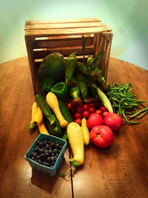 One week's share of our CSA basket.