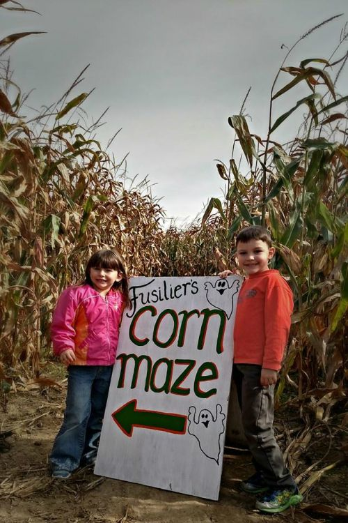 Looking for fun this fall? Come out to our corn maze!
