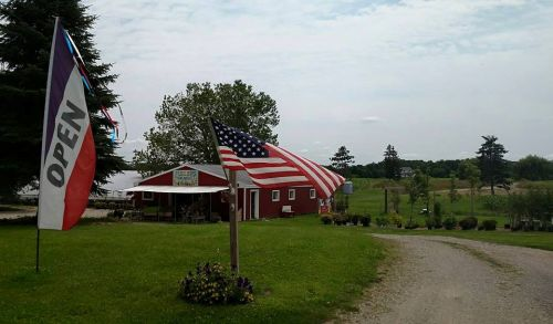 Our Home Farm on Herman Rd. Manchester