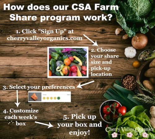 how does a CSA work