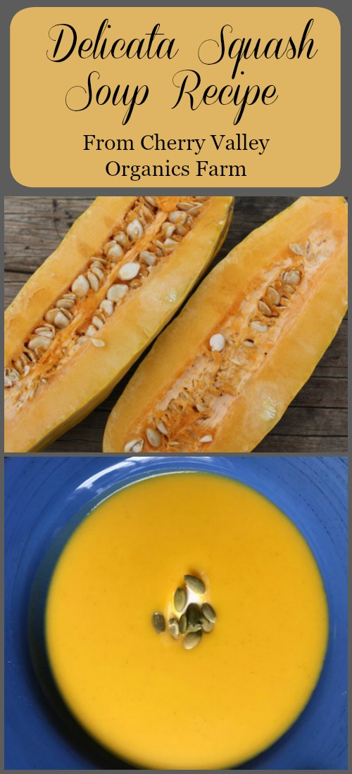 Delicata Squash Soup recipe Pinterest