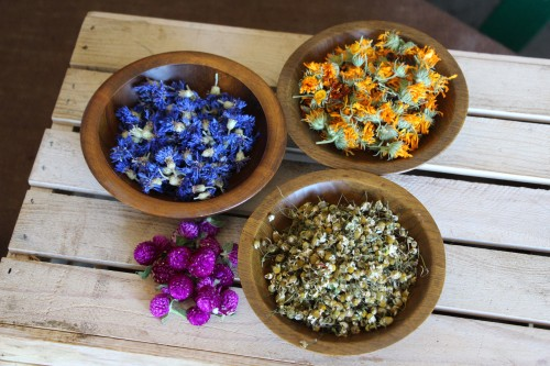 Dried Edible Flower Sample Pack