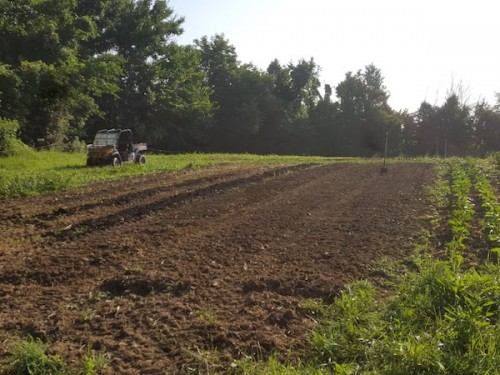Soil care during succession planting
