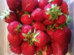 deliciously juicy strawberries