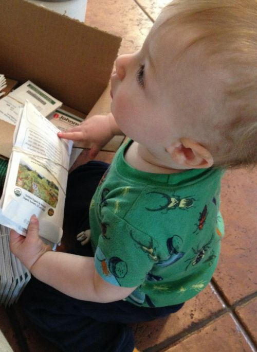 "9 month old Justin is ""helping"" Mom choose seeds"