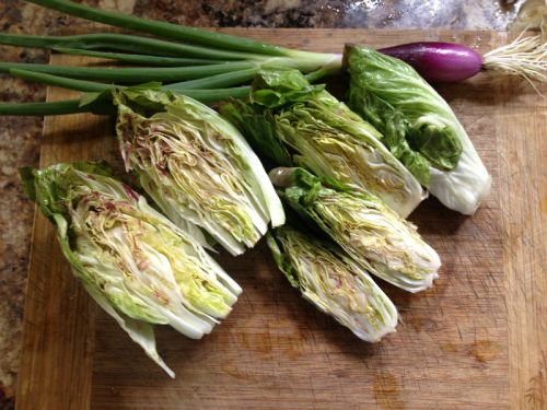 Specialty Radicchio and Tropea onions
